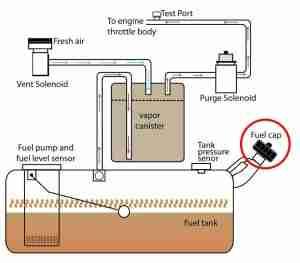 toyota-evap-system-diagram-l-e89d7e482528dd23